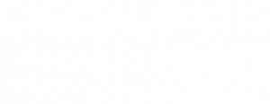 Digital Oasis - Your guide through your digital journey